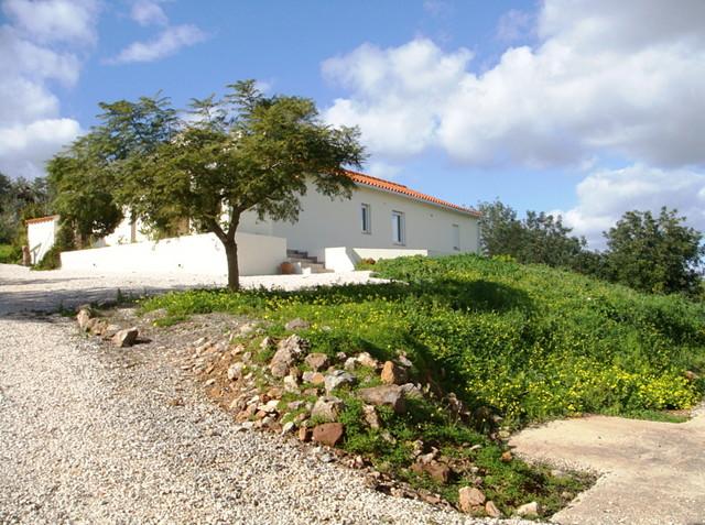 1000007674_jacaranda_and_bungalow.jpg