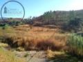 Terreno Rústico com 23970m2 Atabual Mexilhoeira Grande Portimão - bons acessos, árvores de fruto, electricidade