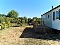 Terreno Rústico com 2890m2 Ribeira Torres e Cercas Silves para vender - água, árvores de fruto, poço, electricidade