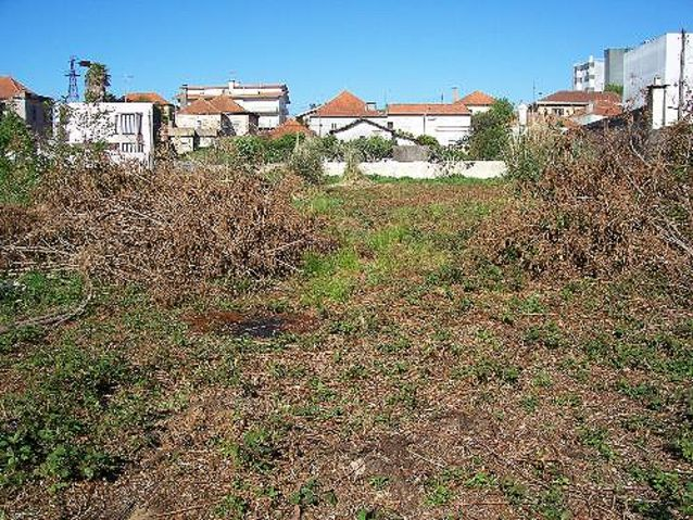 Land for construction Cortegaça Ovar