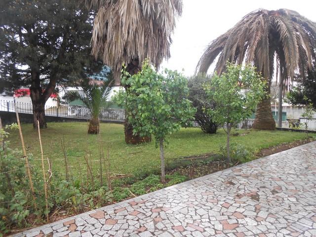 Moradia bem localizada V3 Lourosa Santa Maria da Feira - cozinha equipada, garagem, jardim, lareira, bbq