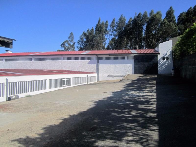 Armazém com 2300m2 Cucujães Vila de Cucujães Oliveira de Azeméis