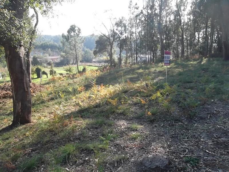 Land with 2000sqm Nogueira do Cravo Oliveira de Azeméis - construction viability