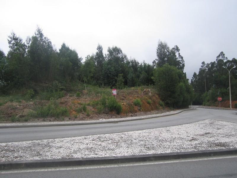 Terreno com 30000m2 Casaldelo São João da Madeira