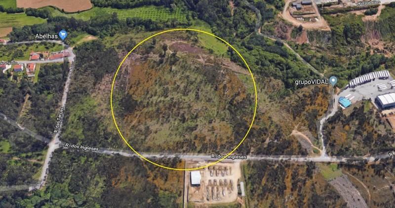 Terreno Rústico com 26000m2 Macieira de Sarnes Oliveira de Azeméis