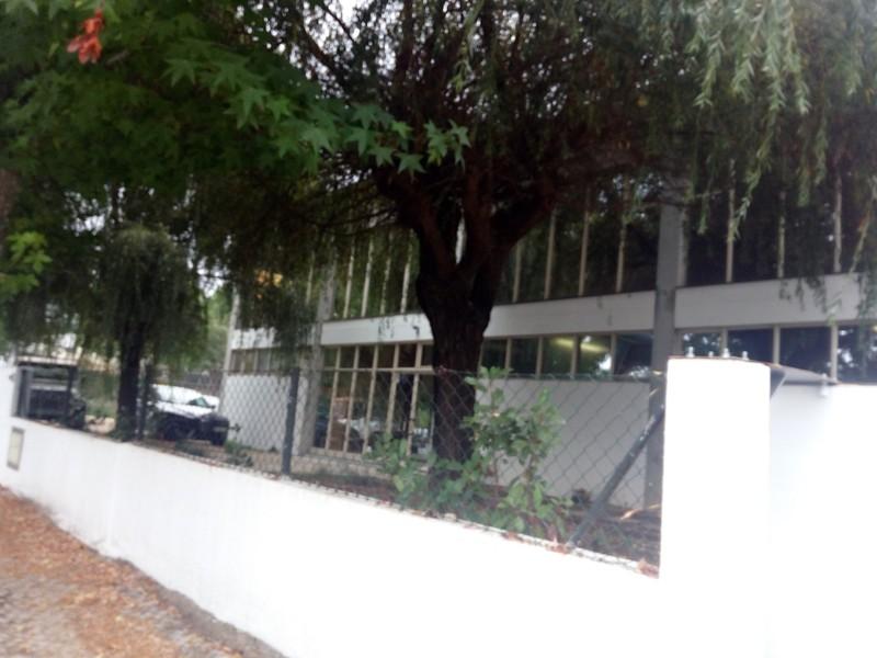 Escritório Industrial com 850m2 O.Azeméis Oliveira de Azeméis - wc