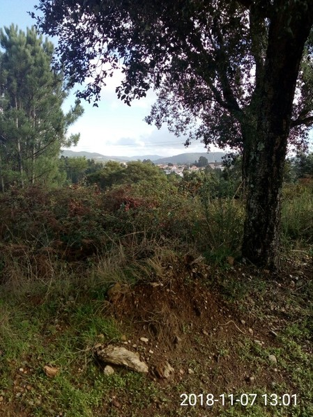 Land with 2500sqm S. Roque/Margonça São Roque Oliveira de Azeméis - construction viability