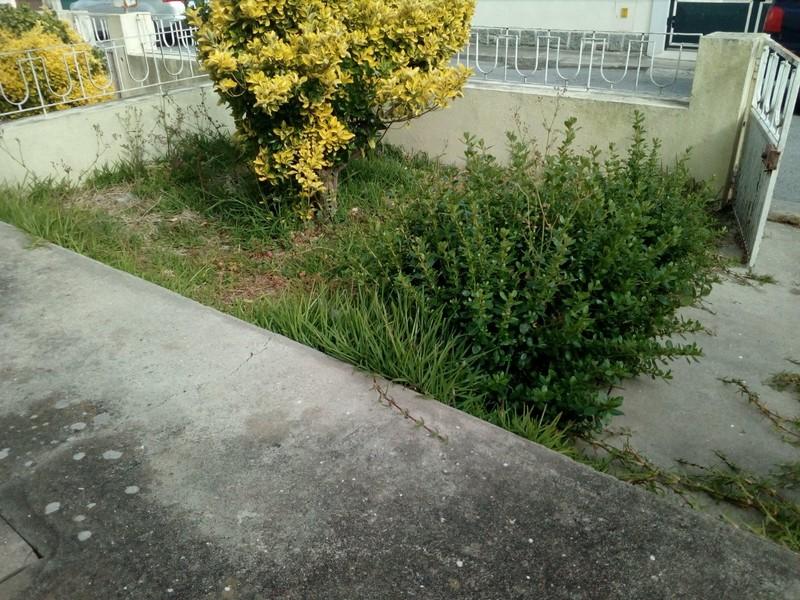 House V3 Ovar - swimming pool, garden, quiet area