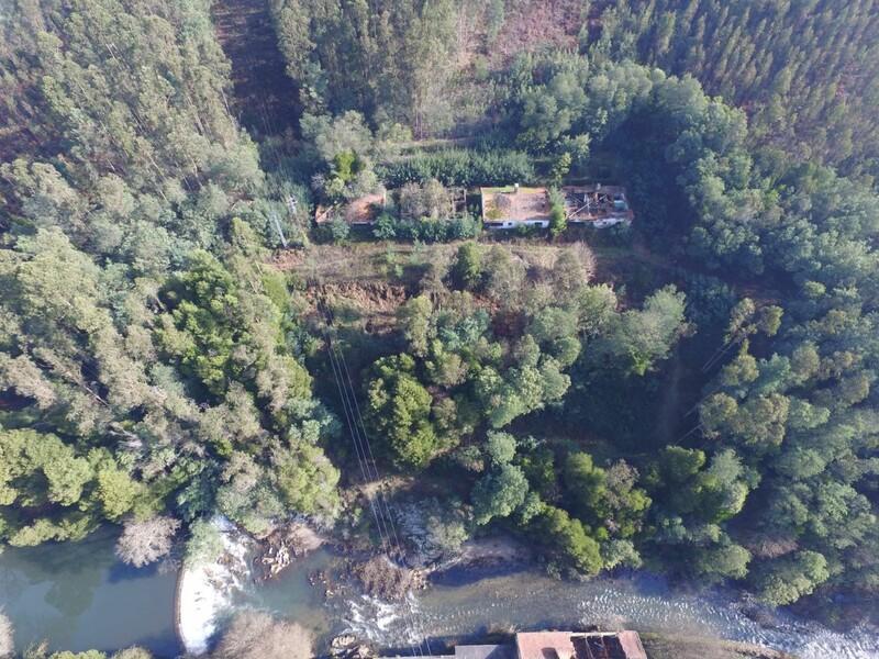 Quinta Palmaz Oliveira de Azeméis - zonas verdes