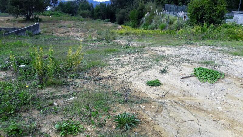 Terreno com 16647m2 Oliveira de Azeméis - viabilidade de construção