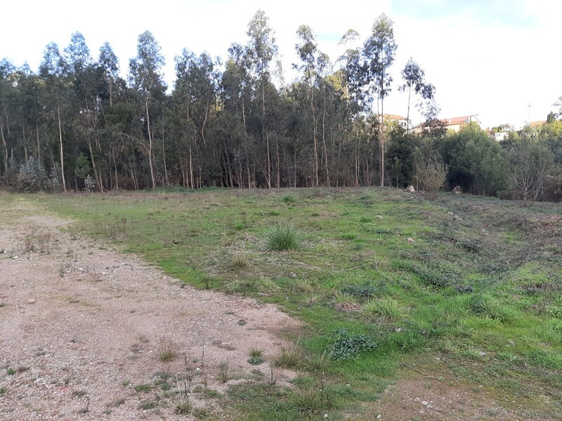 Land with 8500sqm Carregosa Oliveira de Azeméis - easy access