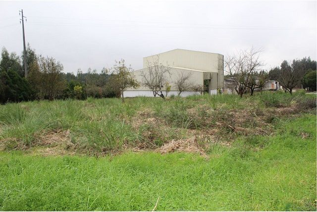 Warehouse with 2369sqm Branca Albergaria-a-Velha