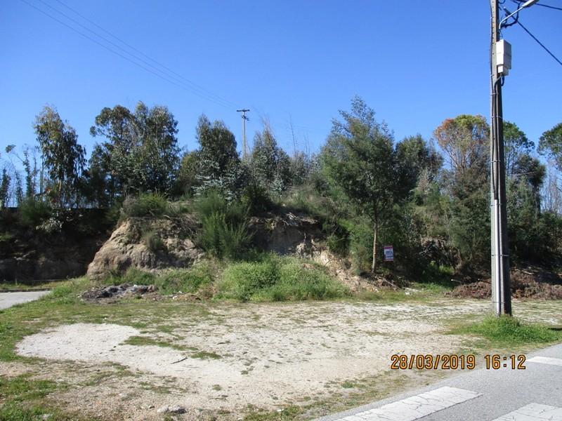 Land Rustic with 20000sqm Vale de Cabra ou Verdeada Oliveira do Conde Carregal do Sal