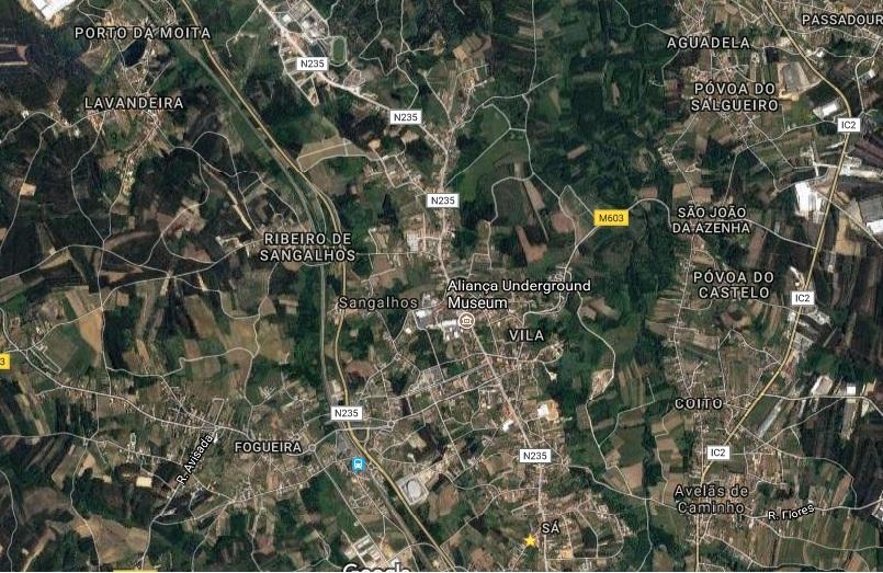 Terreno Rústico com 800m2 Almoinha Sangalhos Anadia