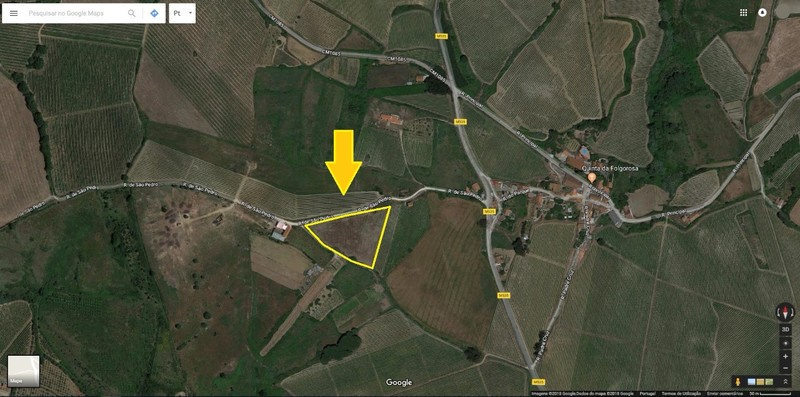 Land Agricultural with 8360sqm Dois Portos Torres Vedras - water, well