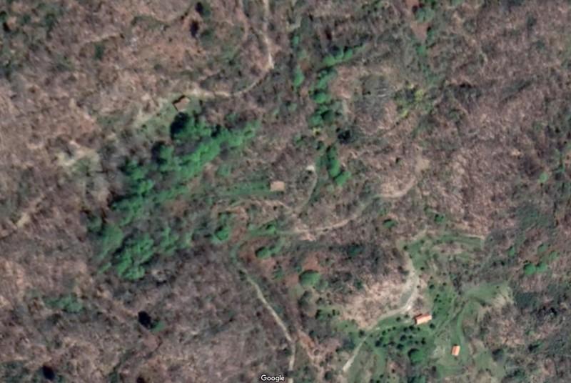 Terreno Rústico com 2972m2 Gonçalo Guarda - oliveiras