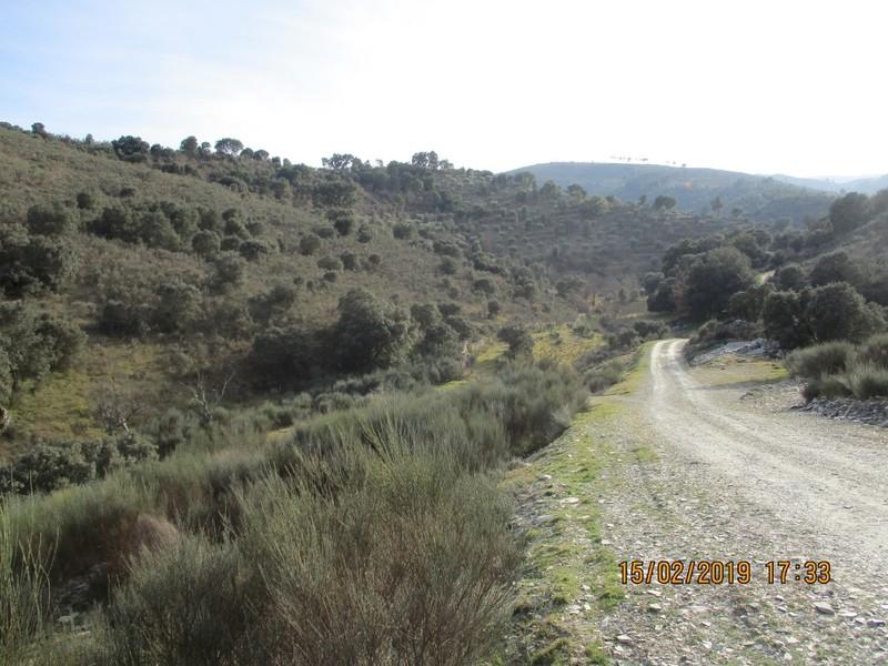 Terreno Rústico com 27200m2 Pereiros São João da Pesqueira - sobreiros, oliveiras