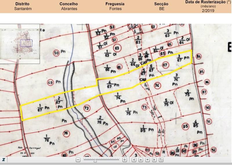 Terreno com 12280m2 Souto Fontes Abrantes - regadio, oliveiras, cultura arvense