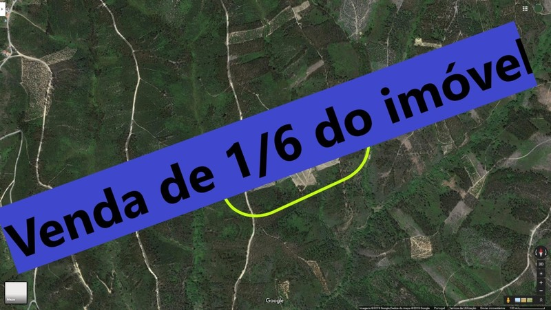 Terreno com 12280m2 Souto Abrantes - regadio, oliveiras, cultura arvense