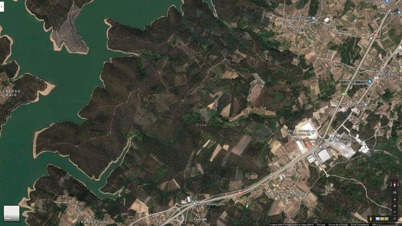 Terreno Rústico com 4500m2 Ovoa Santa Comba Dão