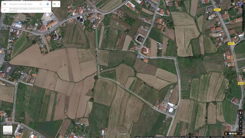 Terreno Rústico com 710m2 Cadaval Branca Albergaria-a-Velha