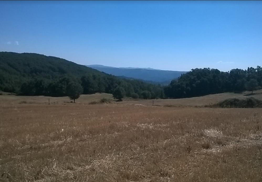 Terreno Rústico com 1498m2 Ribeira Vilar de Ossos Vinhais