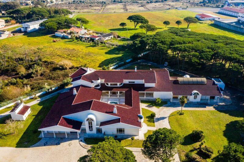 Farm V7 Sintra