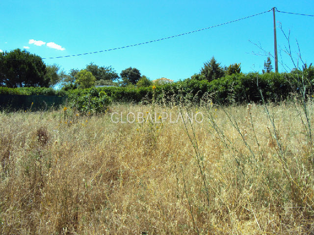 Terreno em zona habitacional Monte Canelas/M.Grande Mexilhoeira Grande Portimão