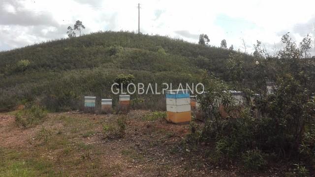 Terreno com 52m2 Casas Velhas/Portimão