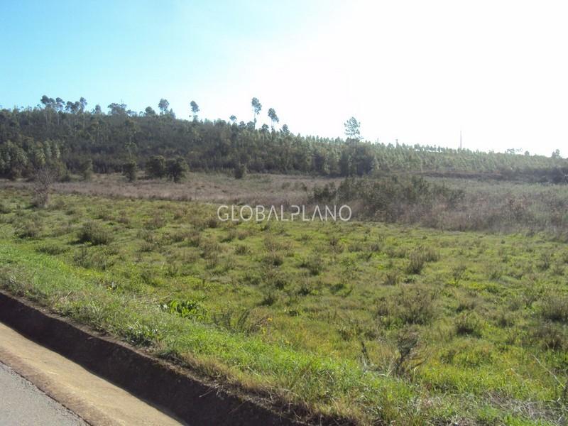 Terreno com 100000m2 Pereira  Mexilhoeira Grande Portimão - viabilidade de construção
