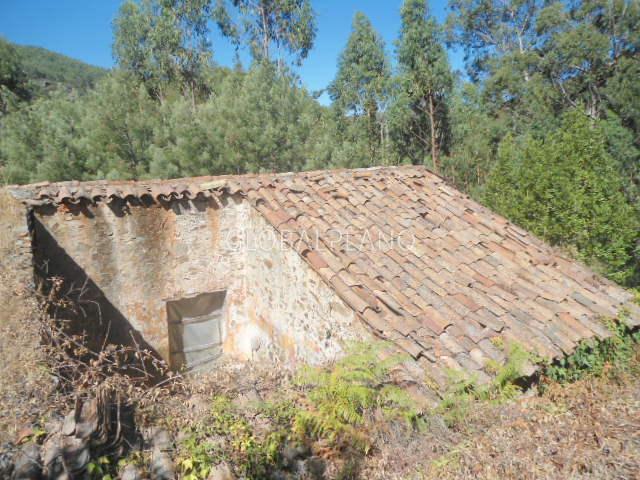 Terreno com 105720m2 Marmelete Monchique - bons acessos, árvores de fruto, sobreiros, oliveiras, tanque, regadio, água
