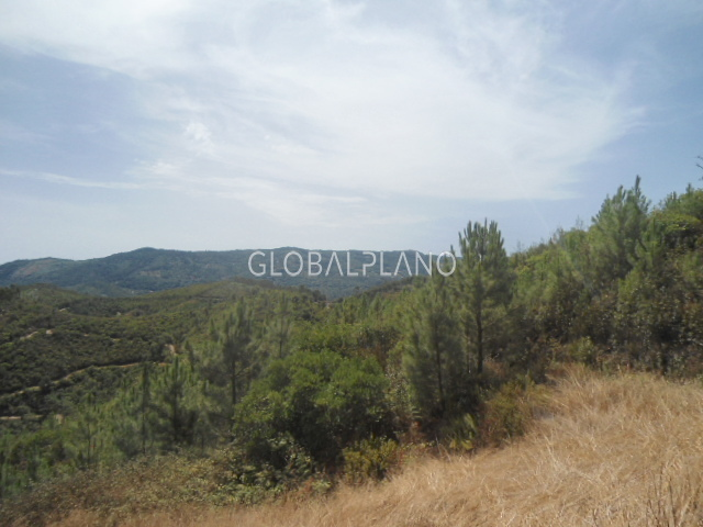 Land with 71.22sqm Alferce, Monchique - easy access, electricity, water