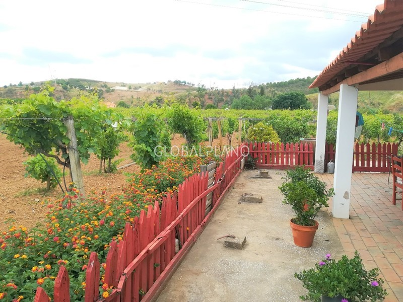 Farm 4 bedrooms Rasmalho Portimão - well, fireplace, arable crop, swimming pool, garden, water hole