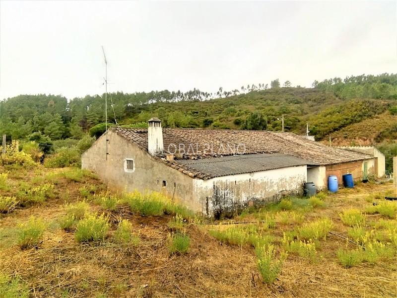 Quinta V2 Monchique Marmelete - sobreiros, água, água de furo, oliveiras