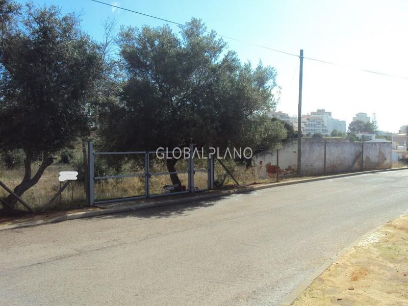 Terreno Urbano com 200m2 Vale de França Portimão - oliveiras
