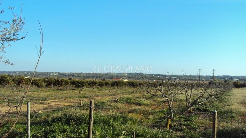 Quinta V2+1 Sitio das Lameiras/Lagoa Lagoa (Algarve) - árvores de fruto, bbq, equipada