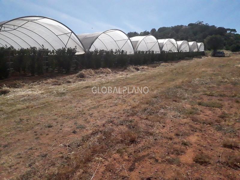 Terreno Agrícola com 28700m2 Mexilhoeira Grande Portimão - água, furo