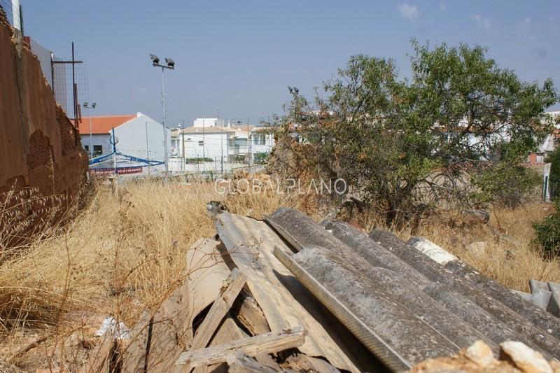 Terreno para construção Chão das Donas Portimão - árvores de fruto