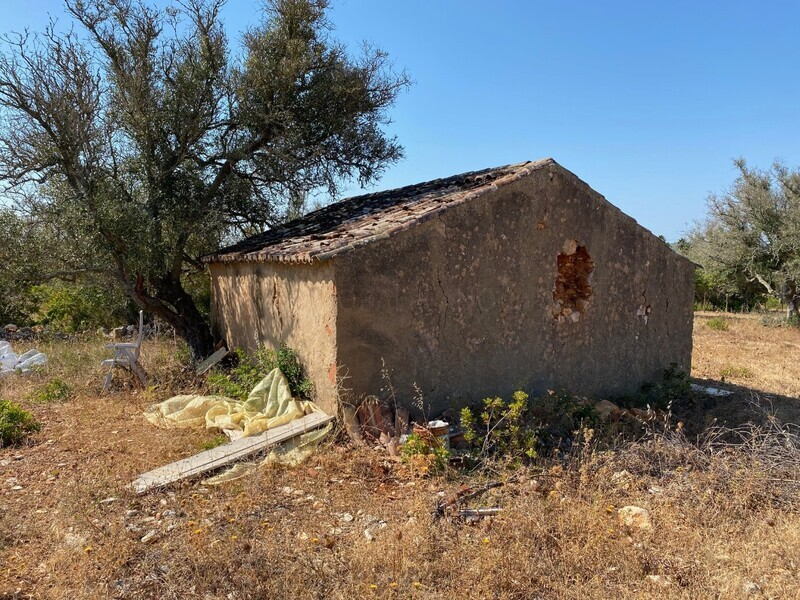 Land with 20560sqm Mexilhoeira Grande Portimão - olive trees, water, mains water