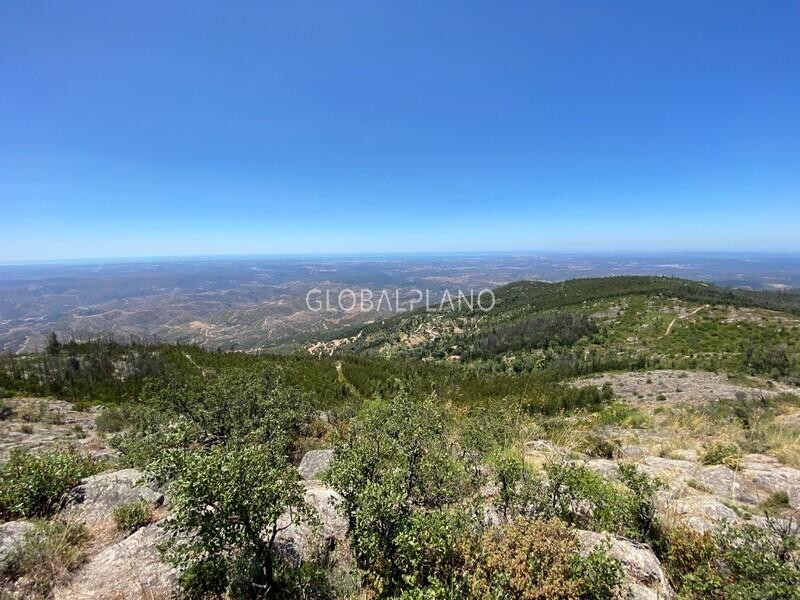 Terreno com 1153600m2 Picota Monchique - água, viabilidade de construção, bons acessos, excelente vista