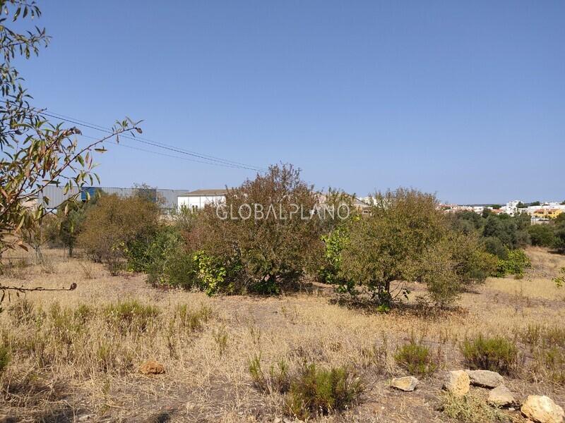 Plot with 8420sqm Parchal/ Lagoa Lagoa (Algarve) - construction viability