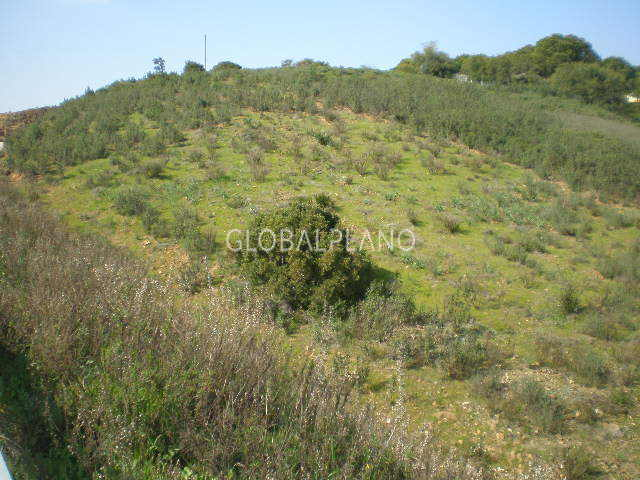 Terreno Rústico com 4950m2 Senhora do Verde Mexilhoeira Grande Portimão - bons acessos, luz