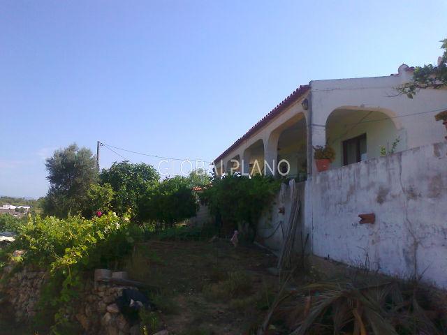 Quinta V3 Estombar Estômbar Lagoa (Algarve) - árvores de fruto, bons acessos