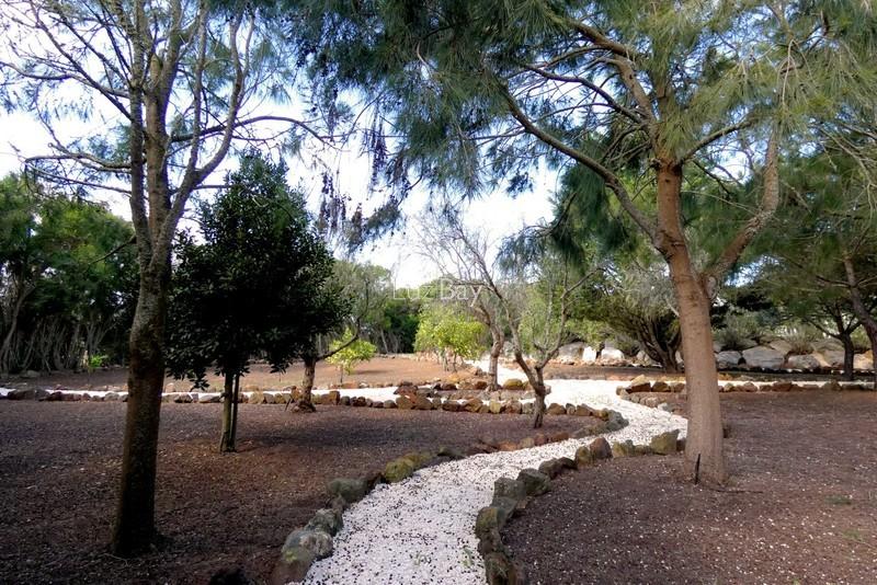 1000013996_garden_park3__medium_.jpg