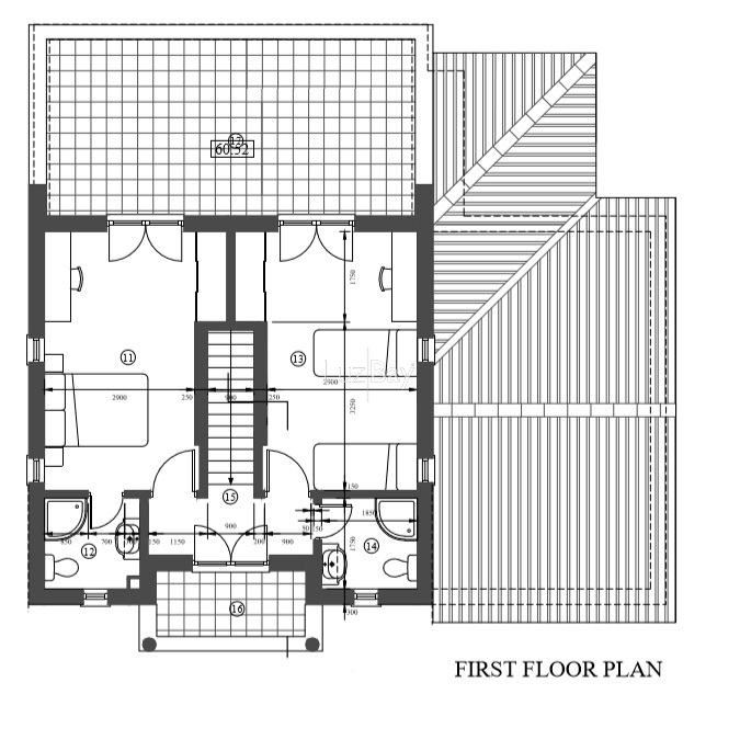 1000014822_first_floor.jpg