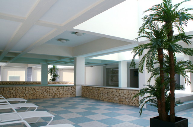 1000009234_indoor_pool_3.jpg