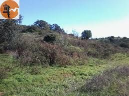 Land Rustic with 800sqm Rio Seco Castro Marim