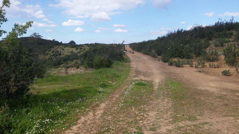 Terreno Rústico com 35600m2 Monte Pereirão Alcoutim - bom acesso