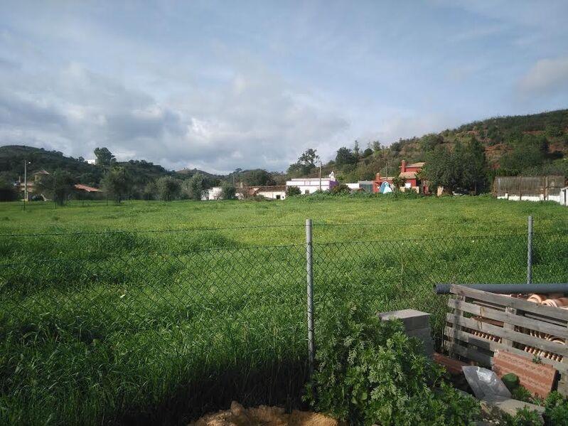 Terreno Agrícola com 9027m2 Santa Catarina da Fonte do Bispo Tavira - sobreiros