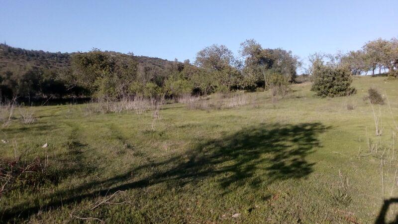 Terreno Rústico com 11200m2 Paderne Albufeira - furo